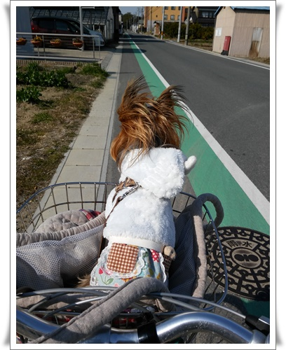 自転車の乗ってIMG00389-20160219