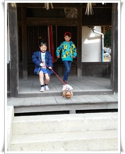 姫路にIMG00441-20160228