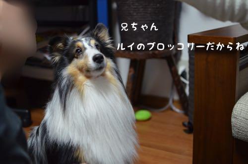 IMG_8606.jpg