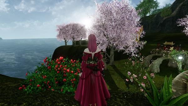 3月11日マハの家の庭