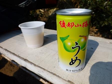 綾部山梅林26