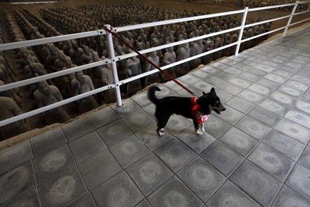 姫路太陽公園5