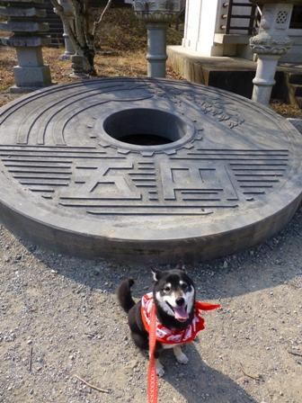 姫路太陽公園41