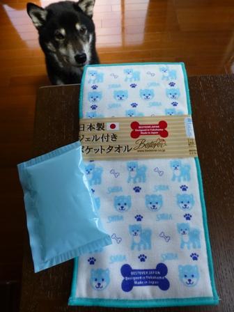 日本製ジェル付きポケットタオル6