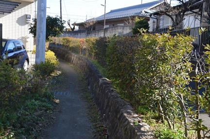 2016-01-16_47.jpg