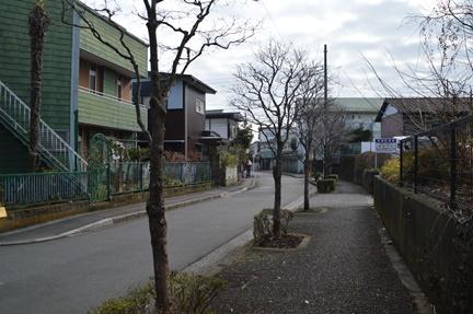 2016-01-31_44.jpg