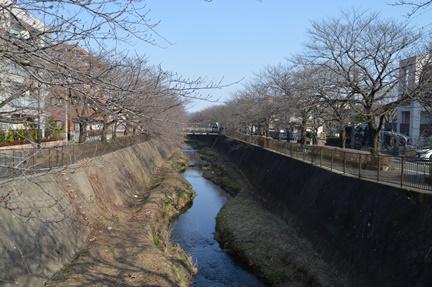 2016-02-27_137.jpg