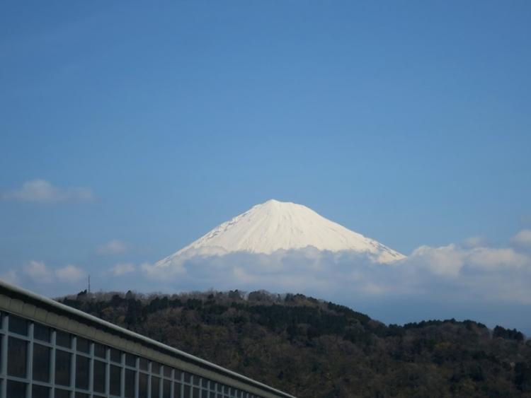 富士山4160329