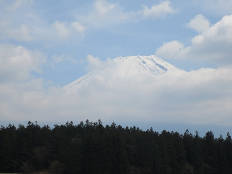 富士山5160329