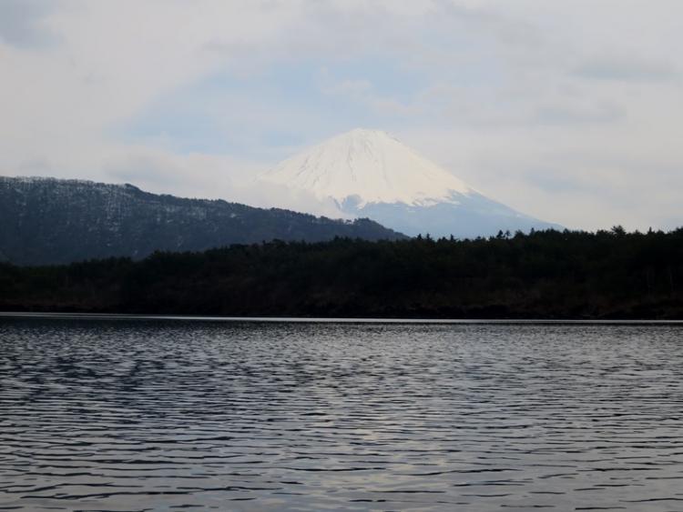 富士山7160329