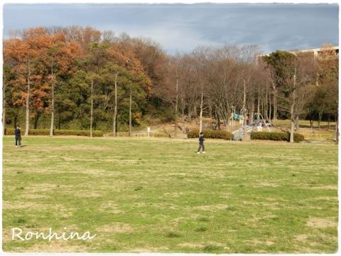 誕生日のお散歩③
