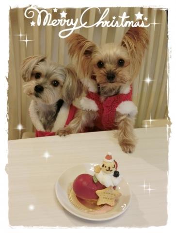 クリスマスケーキ④