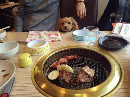 焼き肉まーちゃん