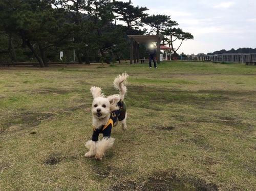 公園でビューン②