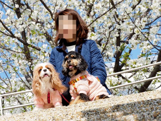 blog_P3216449.jpg