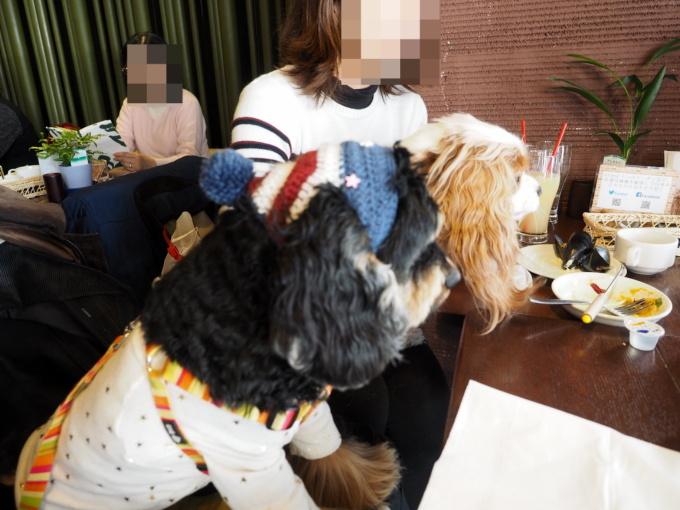 blog_P3266916.jpg
