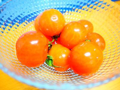 サクランボトマト