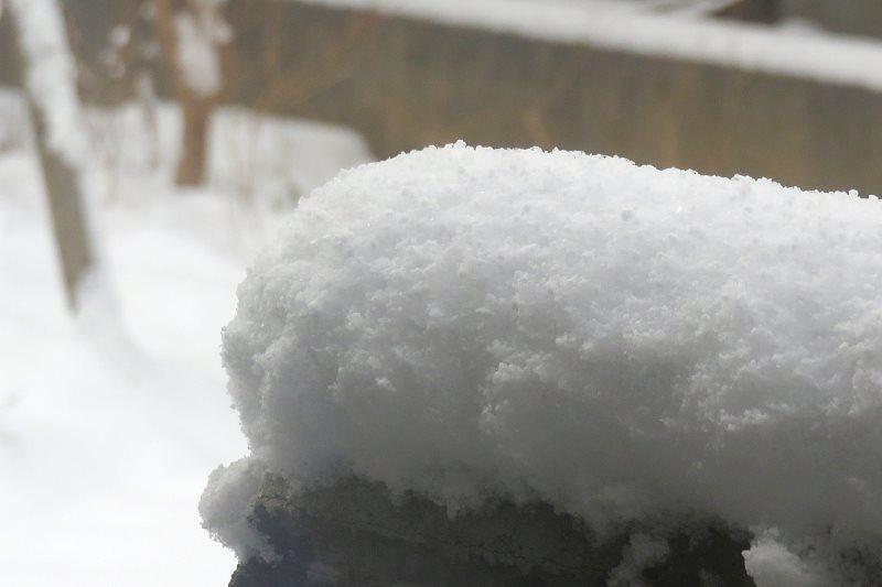 20160225_snow.jpg