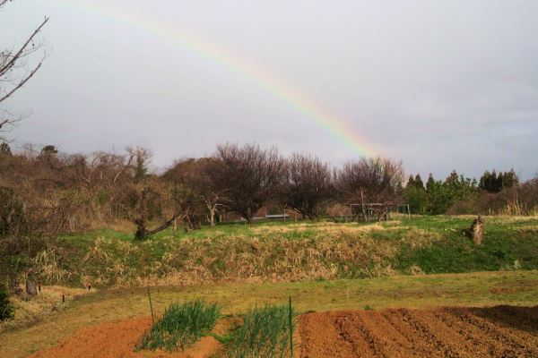 20160324_rainbow.jpg