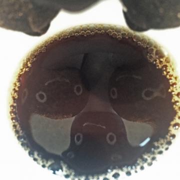 20160305-cafe (5)-加工