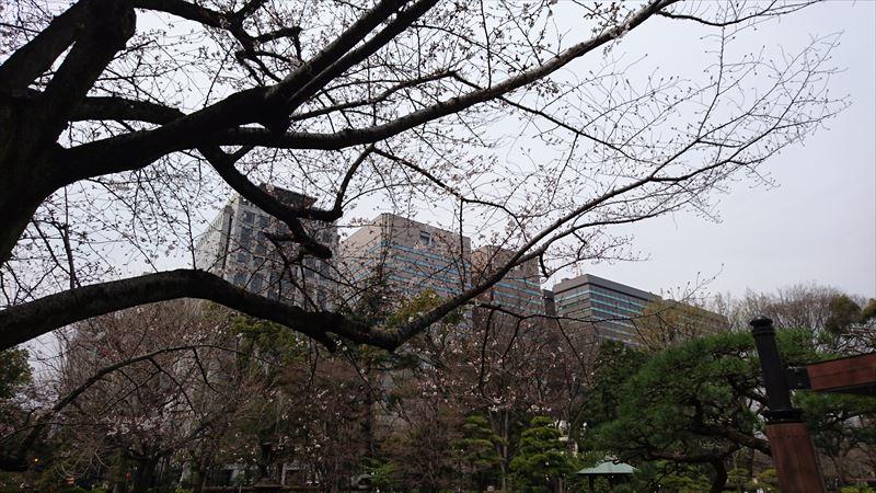 20160324004_R.jpg