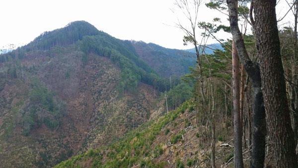 sawahara100-021.jpg