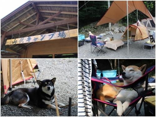 7月道志キャンプ