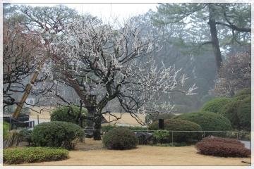 H28030712東京都庭園美術館