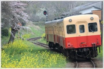 H28040803小湊鐵道里山トロッコ列車