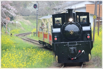 H28040804小湊鐵道里山トロッコ列車