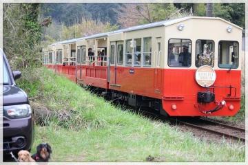 H28040807小湊鐵道里山トロッコ列車