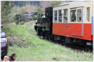 H28040806小湊鐵道里山トロッコ列車
