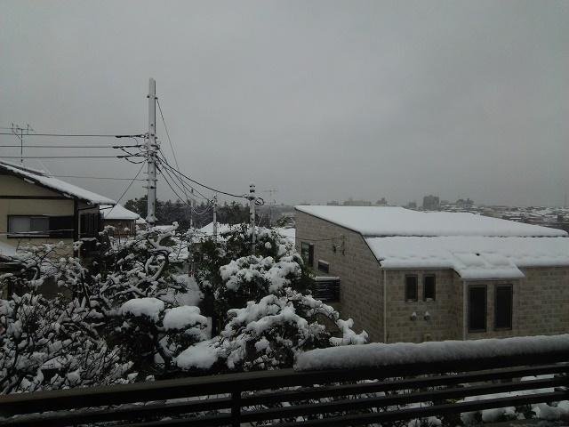 280118雪1