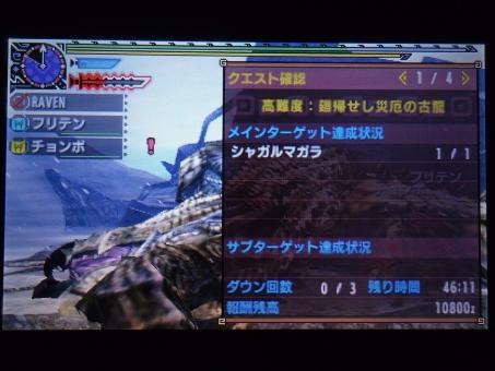 DSC01036_R.jpg