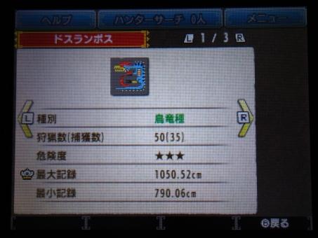 DSC01038_R.jpg