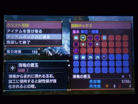 DSC01044_R.jpg