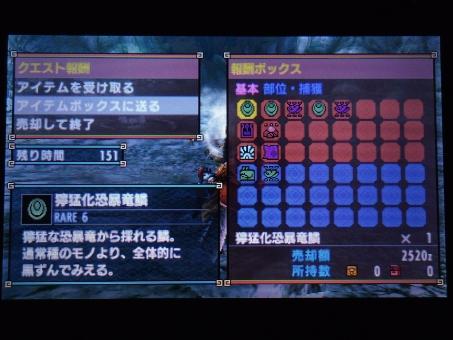 DSC01067_R.jpg