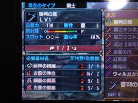 DSC01068_R.jpg