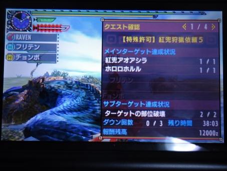 DSC01098_R.jpg
