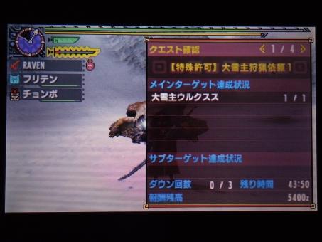 DSC01108_R.jpg