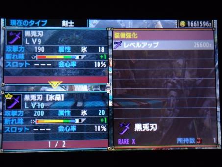 DSC01126_R.jpg