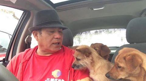 愛犬物語 サンシン、サンバ