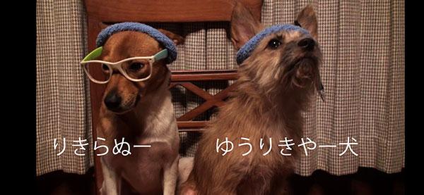 愛犬物語 サンシンちゃん