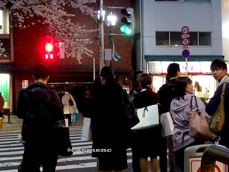 夕方横断歩道桜