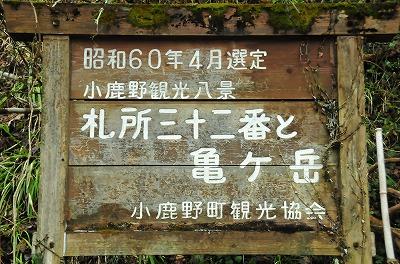 DSC_3287_20160322060126c0d.jpg