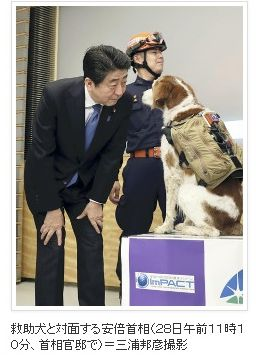 災害救助犬にチョッキ