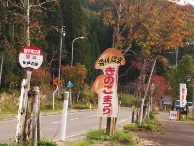 湯田 きのこ祭り