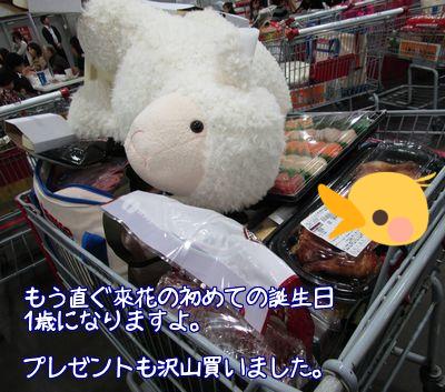 コストコ買い物2