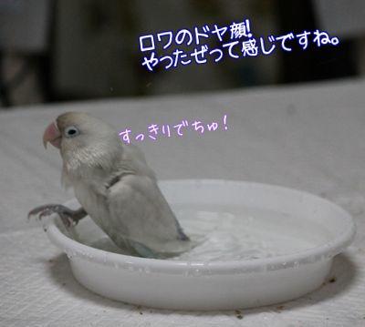 ロワの水浴び3