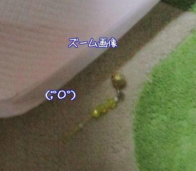 黄色い鈴9
